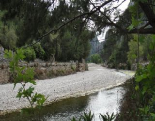 The stream that runs through Olympos